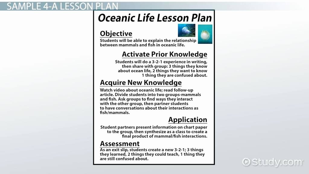 texas ace lesson plan template