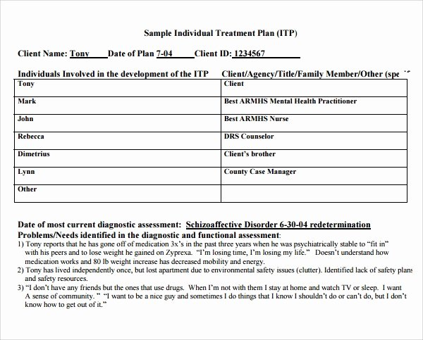 Therapist Treatment Plan Template Awesome 8 Treatment Plan Templates