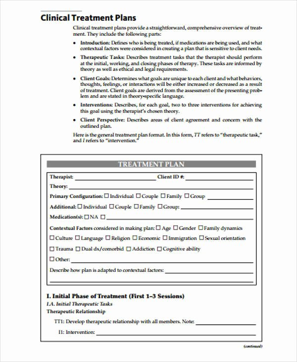 Therapist Treatment Plan Template Beautiful 8 Treatment Plan Samples & Templates