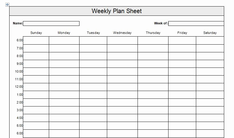Time Management Plan Template Lovely 26 Of Time Management Plan Template