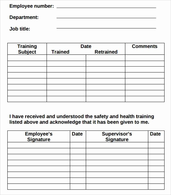 Training Plan Template Word Lovely 9 Free Training Log Templates Pdf Word