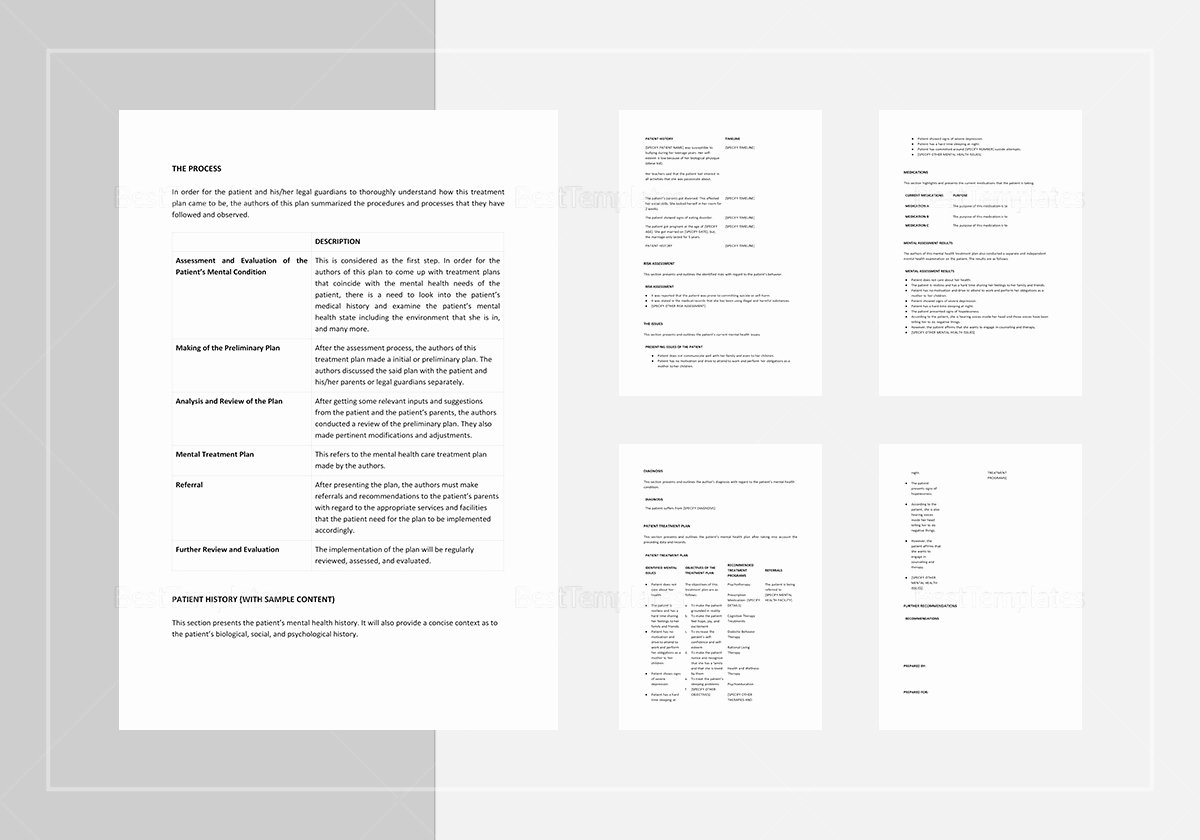 Treatment Plan Template Mental Health Lovely Mental Health Treatment Plan Template In Word Apple Pages