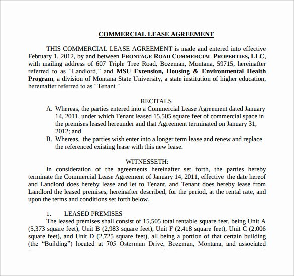 Triple Lease Agreement Lovely 8 Sample Net Lease Agreement Templates