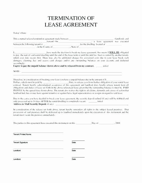 Triple Lease Agreement New Triple Net Lease form