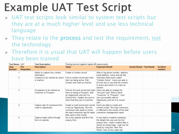 Uat Test Plan Template Best Of Best Practices for Testing In Salesforce