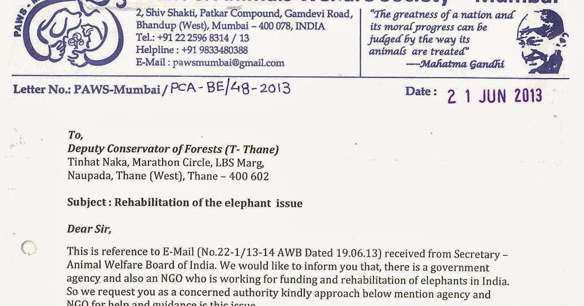 Uf Letter Of Recommendation form Luxury Save Jumbo Paws Mumbai Letter to Dcf Thane In Regards to