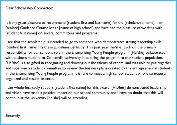 Usf Letter Of Recommendation Unique 20 Best Reference Letter Examples and Writing Tips