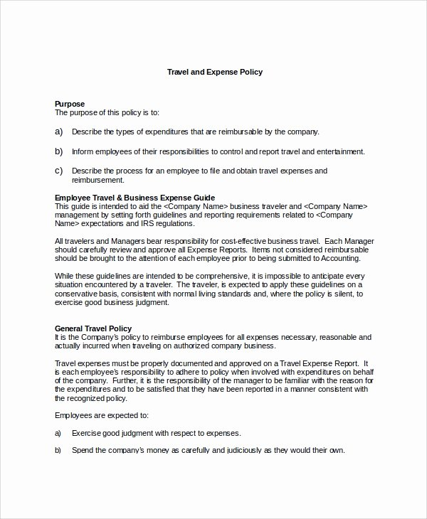 Vacation Coverage Plan Template Beautiful 9 Travel Policy Templates
