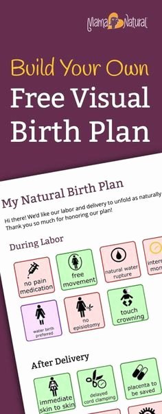 Visual Birth Plan Template Awesome Birth Plan Template 20 Download Free Documents In Pdf