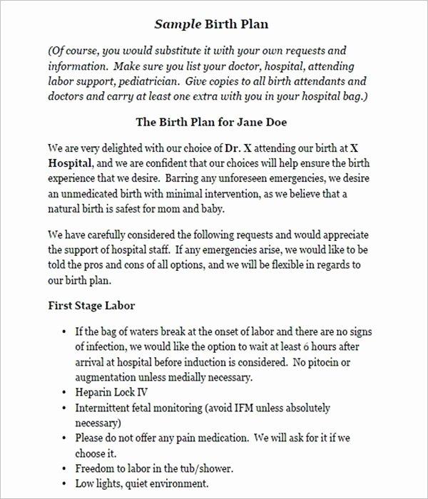 Visual Birth Plan Template Elegant 50 Free Birth Plan Templates Word Pdf formats