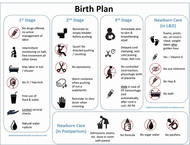 Visual Birth Plan Template New 17 Best Images About Birth or It S Really Not the Stork