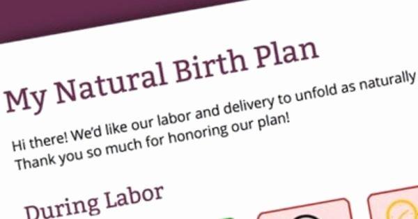 Visual Birth Plan Template Unique Free Visual Birth Plan Template that Nurses Won T Scoff