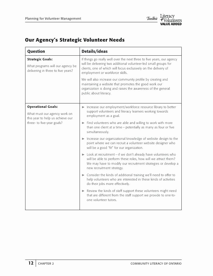 Volunteer Recruitment Plan Template Unique Volunteer Recruitment Plan Template Program Strategy