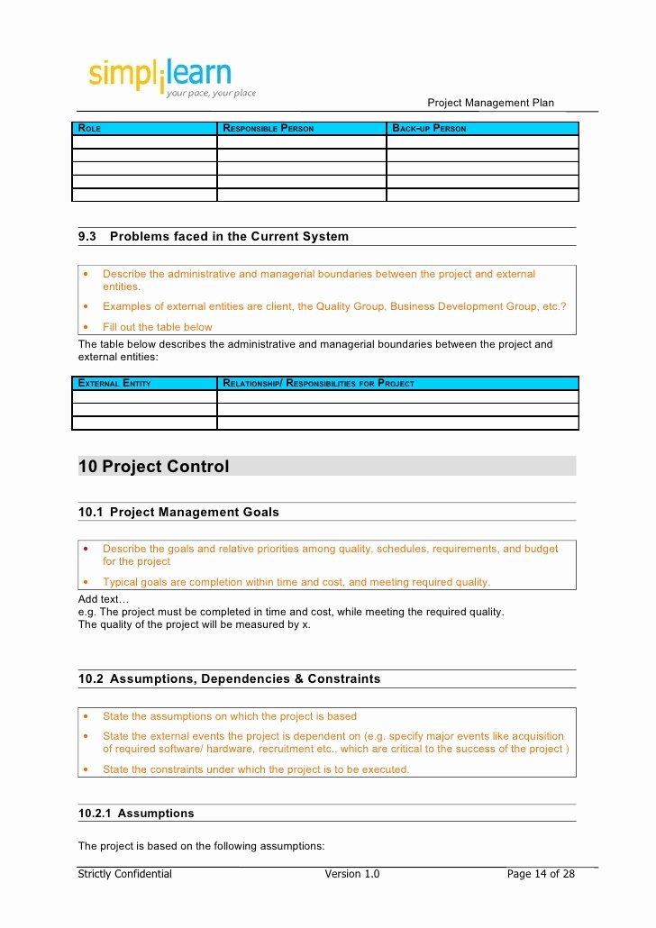 Website Development Project Plan Template Luxury Project Management Plan Template