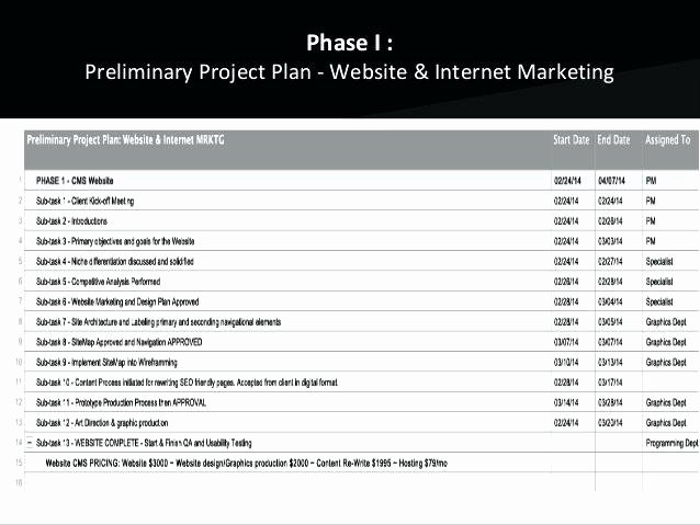 Website Project Plan Template Lovely Action Plan with Tar Pletion Date Planning Medium to