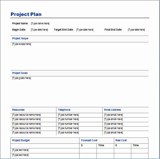Website Project Plan Template Unique Project Plan Template