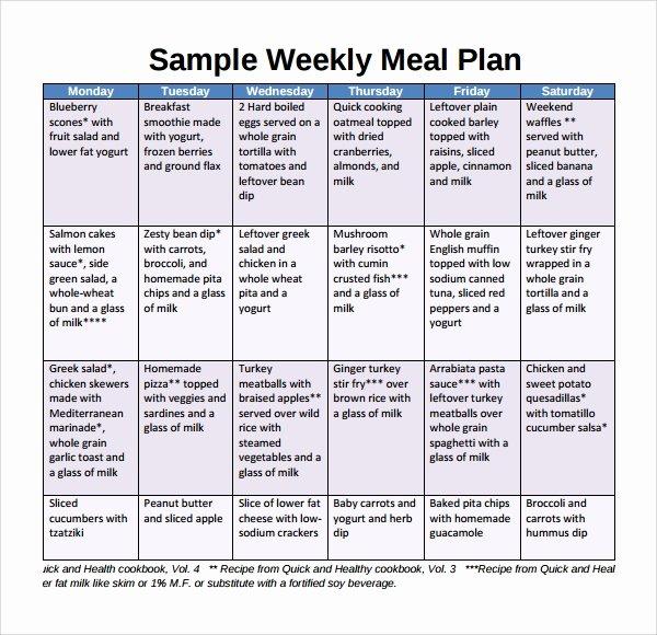 Weekly Food Plan Template Fresh Sample Weekly Meal Plan Template 9 Free Documents In