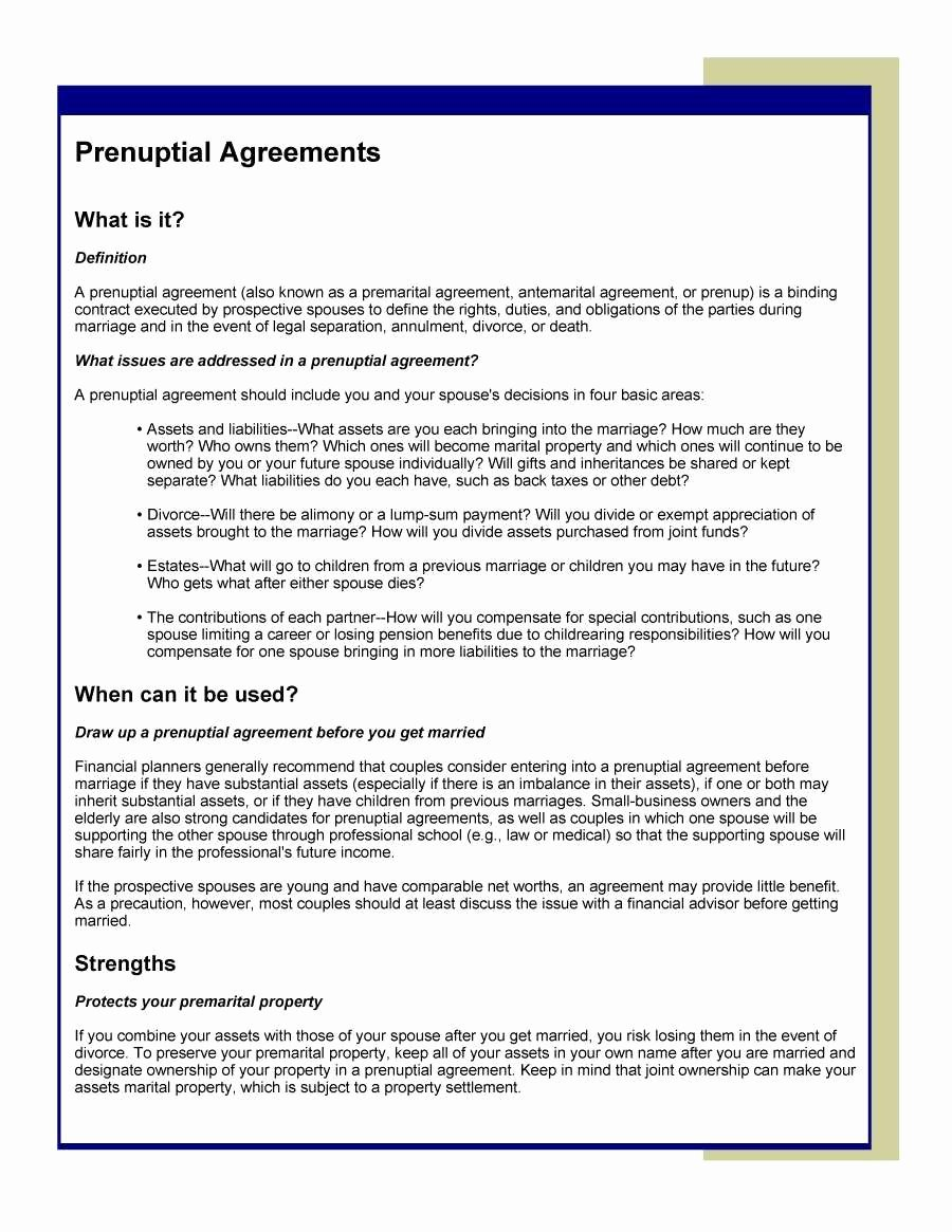 Well Share Agreement New D Well Agreement form Quick 30 Prenuptial Agreement