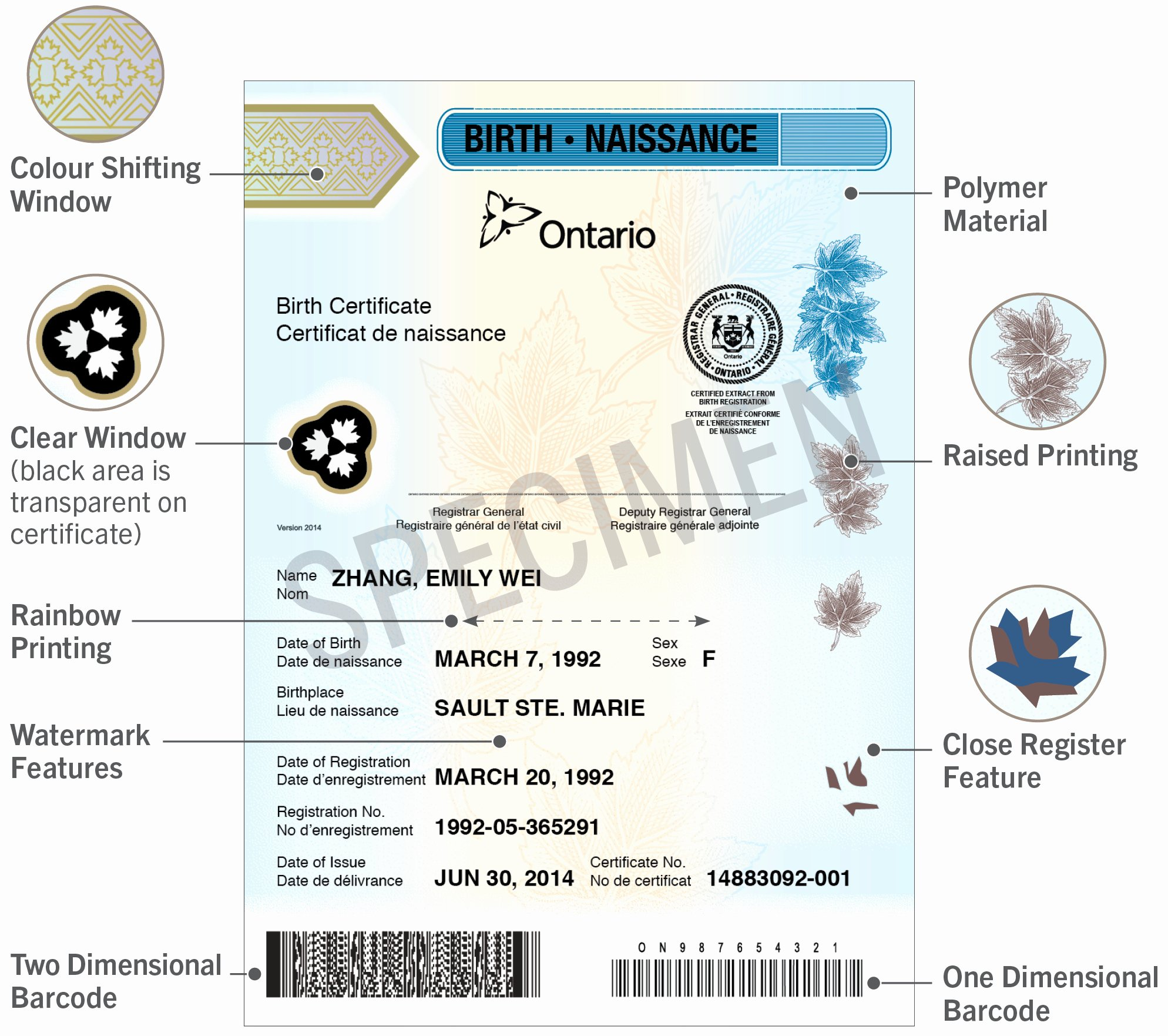 What Does A California Birth Certificate Look Like Unique Newsroom Polymer Birth Certificates