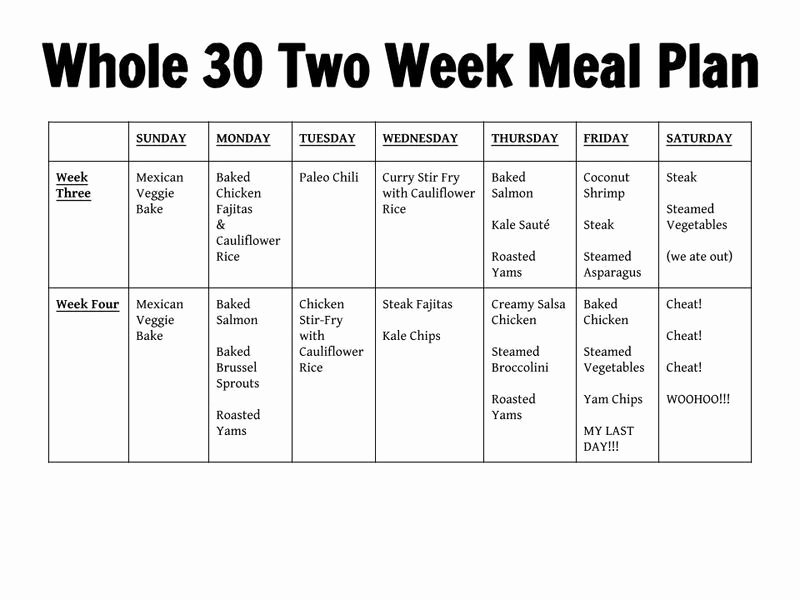 Whole30 Meal Plan Template Luxury whole30 Food Planner