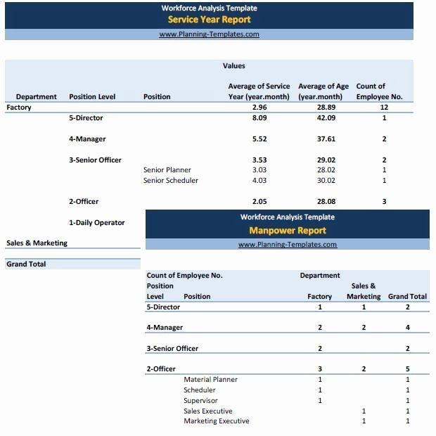 Workforce Plan Template Excel Elegant Workforce Analysis Template In Excel Spreadsheet Manpower